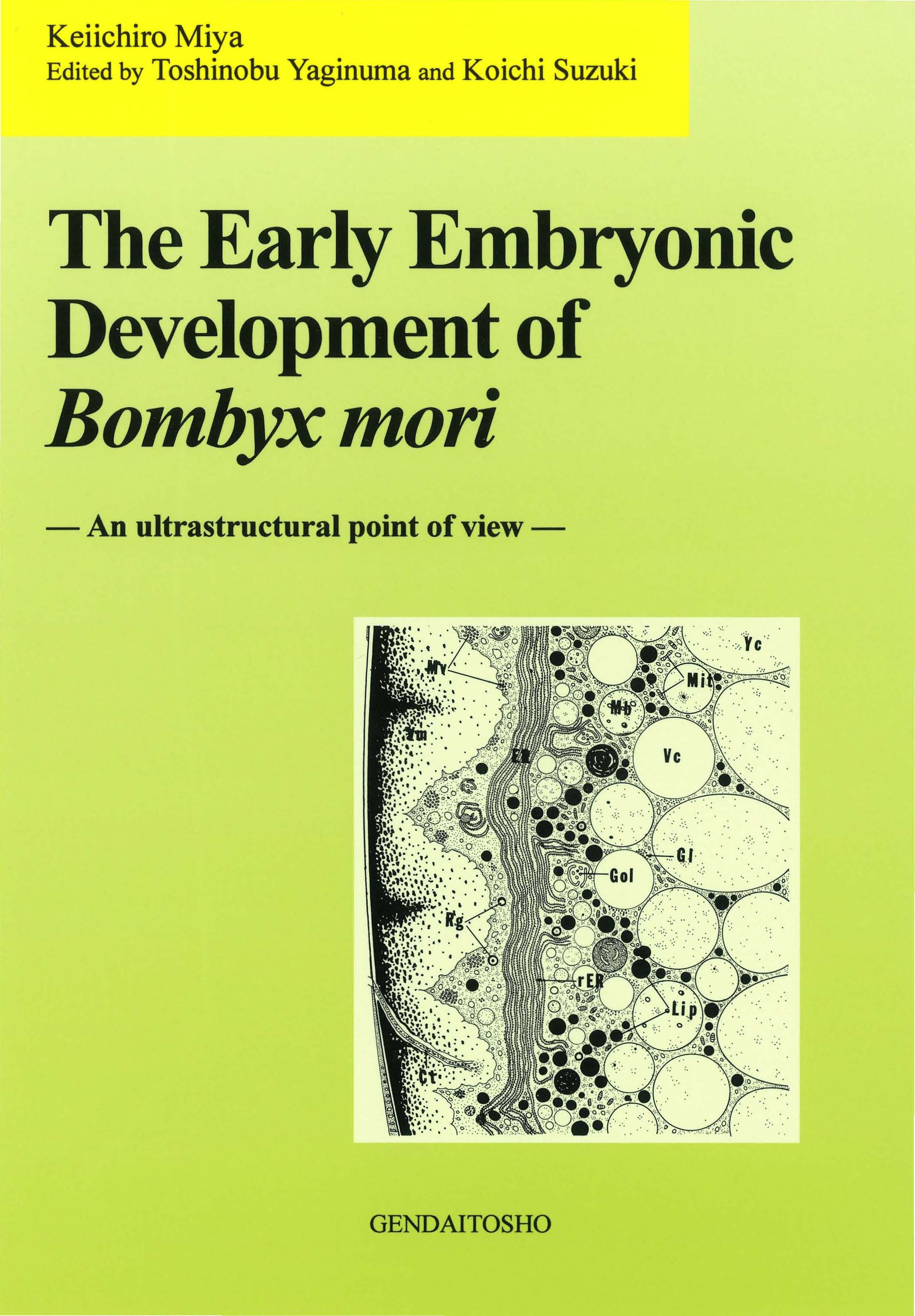 The Early Embryonic Development of Bombyx mori